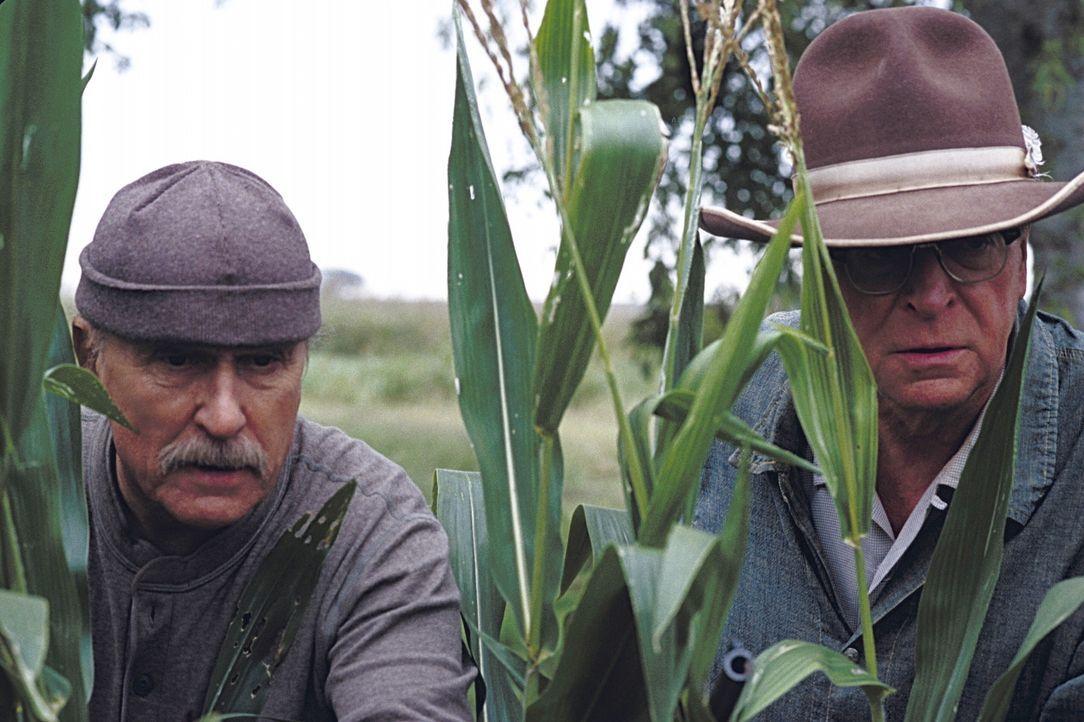 Etwas verschrobene ältere Männer: Hub (Robert Duvall, l.) und Gath (Michael Caine, r.) ... - Bildquelle: New Line Cinema