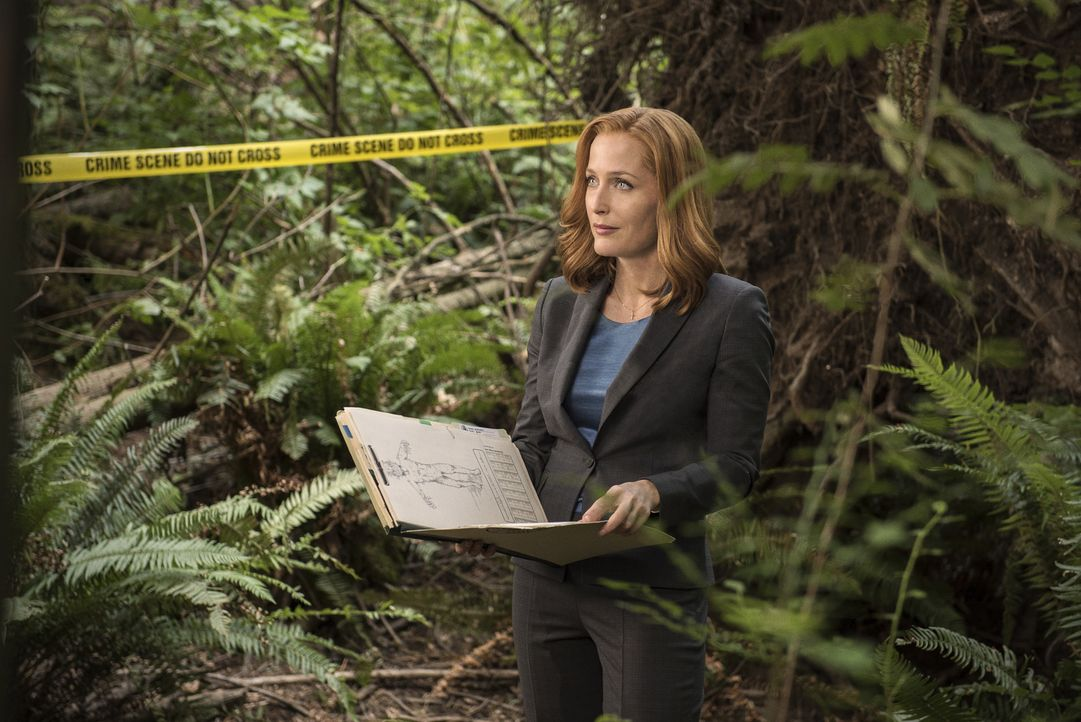Eine Leiche wird mit aufgerissener Kehle im Wald aufgefunden. Scully (Gillian Anderson) soll nun untersuchen, ob wirklich ein echsenartiges Monster... - Bildquelle: 2016 Fox and its related entities.  All rights reserved.