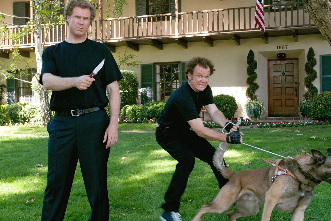 Alles, was Brennan (Will Ferrell, l.) und Dale (John C. Reilly, r.) anfangen, endet zum Leidwesen ihrer Eltern im totalen Chaos ... - Bildquelle: 2008 Columbia Pictures Industries, Inc. and Beverly Blvd LLC. All Rights Reserved.