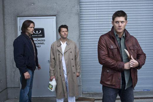 Supernatural - Castiel (Misha Collins, M.) versucht noch immer, Sam (Jared Pa...
