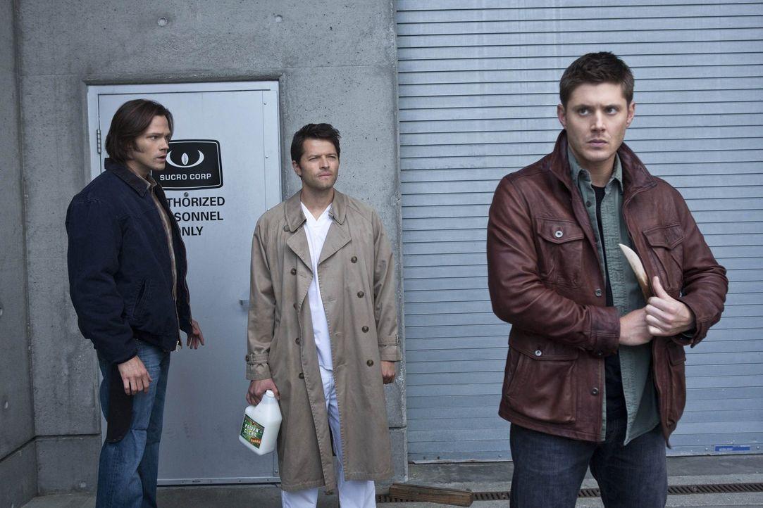 Castiel (Misha Collins, M.) versucht noch immer, Sam (Jared Padalecki, l.) und Dean (Jensen Ackles, r.) bei ihrer gefährlichen Suche zu helfen. Er a... - Bildquelle: Warner Bros. Television