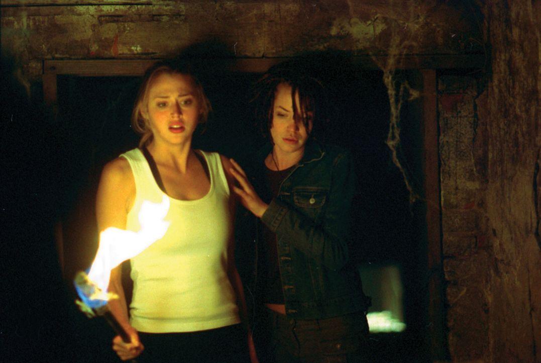 Kristy (Estella Warren, l.) und Sharon (Ashley Scott, r.) lassen keine Chance ungenutzt, um unversehrt den Fängen des Psychopaten zu entkommen. Aber... - Bildquelle: HSI Entertainment