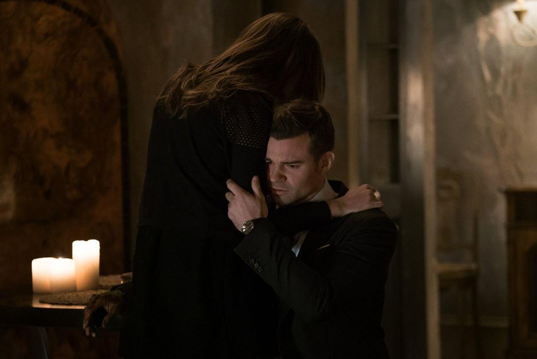 Nachdem Elijah (Daniel Gillies, r.) eine erschreckende Vision hatte, trifft er eine Entscheidung, die ihn am Boden zerstört. Kann Hayley (Phoebe Ton... - Bildquelle: Warner Bros. Entertainment, Inc.