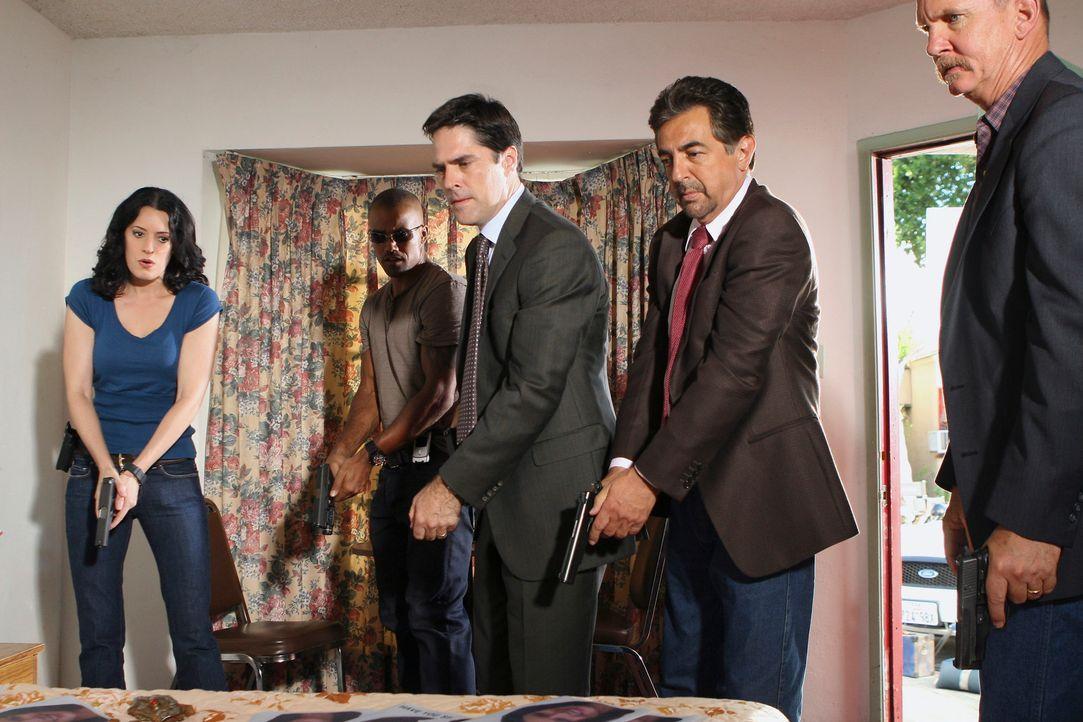 Ein neuer Fall führt Reid, Hotch (Thomas Gibson, M.), Morgan (Shemar Moore, 2.v.l.) und Prentiss (Paget Brewster, l.) und Rossi (Joe Mantegna, 2.v.r... - Bildquelle: Touchstone Television