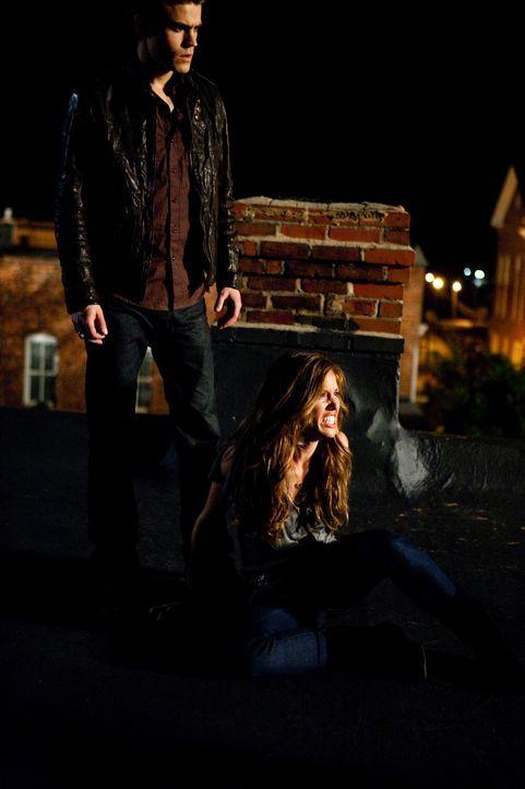 Stefan (Paul Wesley, l.) ist es gelungen, Vicki (Kayla Ewell, r.) aus der Gewalt seines Bruders zu befreien, doch kann er selbst widerstehen, von ih... - Bildquelle: Warner Brothers