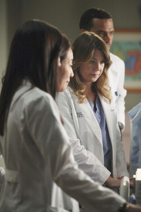 Alle ziehen an einem Strang, um Callie und ihrem Baby Sofia während des schmerzvollen Weges zur Besserung beizustehen: Lexie (Chyler Leigh, l.), Cr... - Bildquelle: ABC Studios