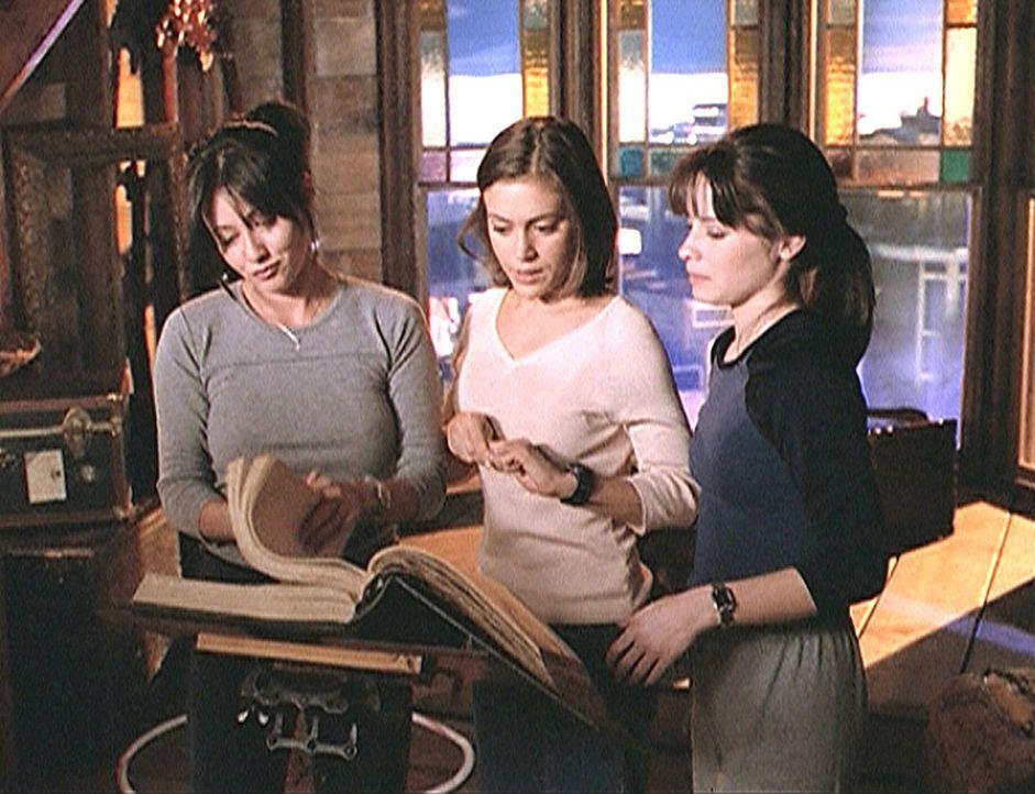 Prue (Shannen Doherty, l.), Phoebe (Alyssa Milano, M.) und Piper (Holly Marie Combs, r.) haben es wieder einmal geschafft: Sie haben den Schwarzen M... - Bildquelle: Paramount Pictures