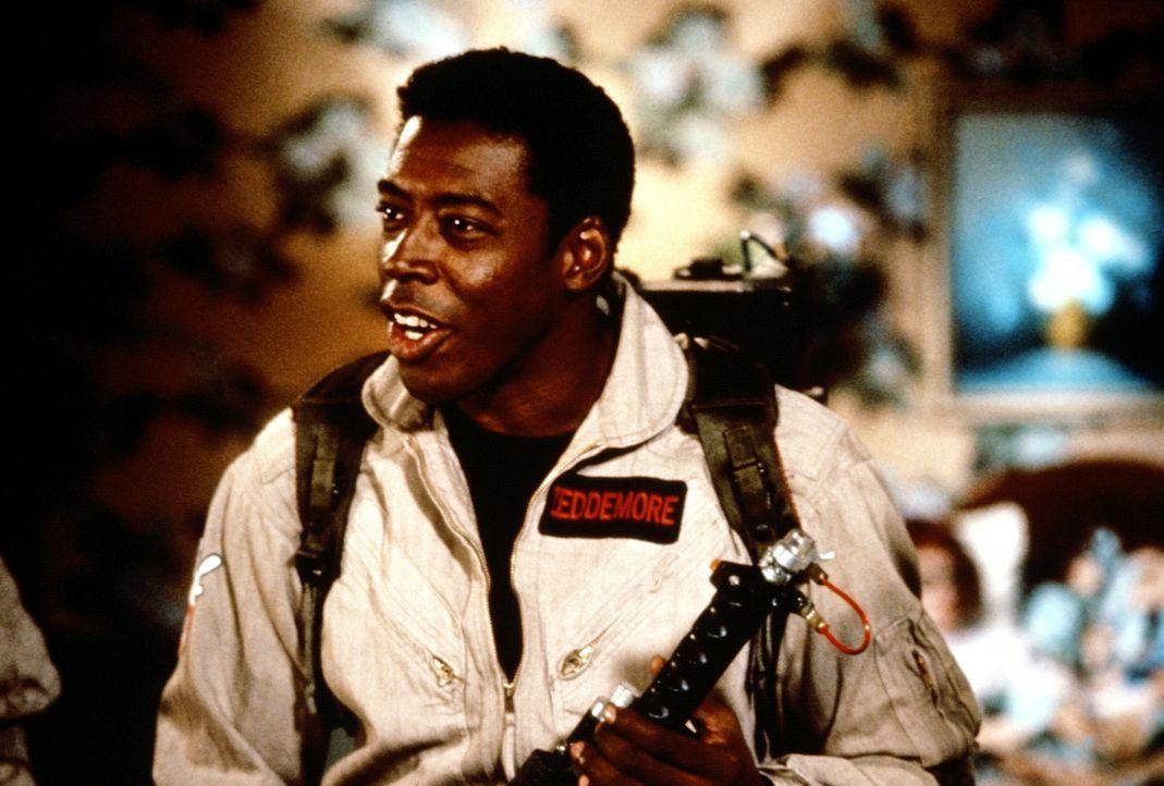Zeddemore (Ernie Hudson) soll in der Wohnung von Janine Melnitz mit dem unangenehmen Spuk aufräumen ... - Bildquelle: 1989 Columbia Pictures Industries, Inc. All Rights Reserved.