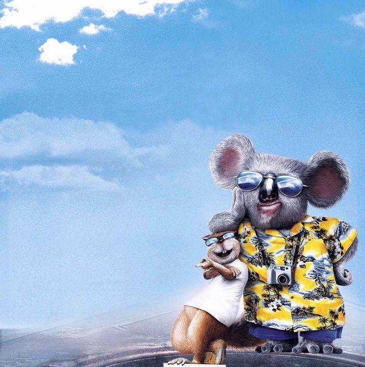 Gehen auf große Reise: Eichhörnchen Benny (l.) und Koala Nigel (r.) ... - Bildquelle: Disney Enterprises, Inc.  All rights reserved