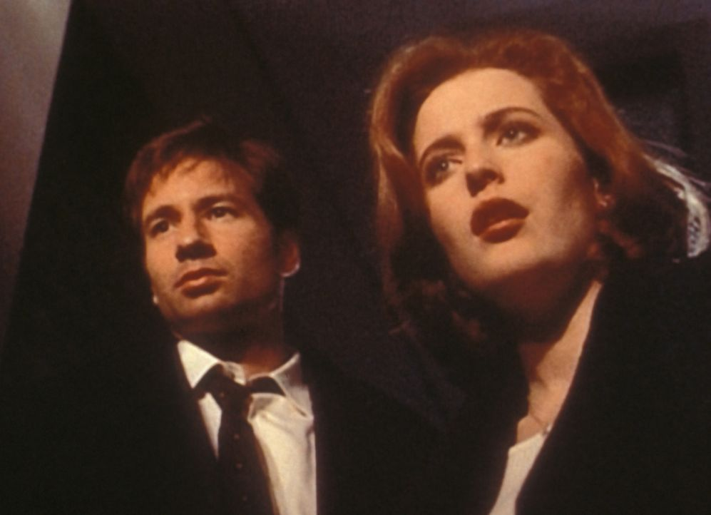 Mulder (David Duchovny, l.) und Scully (Gillian Anderson, r.) untersuchen in der Kleinstadt Comity eine Serie merkwürdiger Todesfälle ... - Bildquelle: TM +   2000 Twentieth Century Fox Film Corporation. All Rights Reserved.