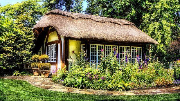 cottage-garten anlegen: pflanzplan - sat.1 ratgeber, Haus und garten