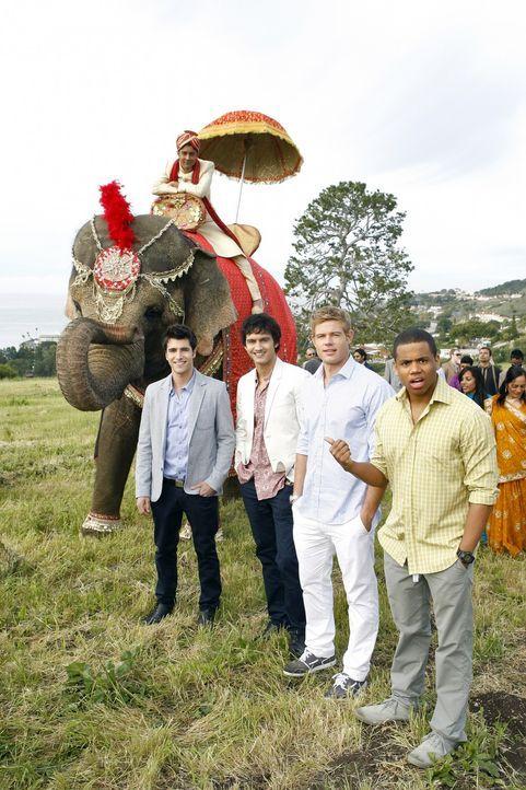 Feiern eine traditionell indische Hochzeit (v.l.n.r.): Bräutigam Raj Khan (Manish Dayal), Marco (Freddie Smith), Navid Shirazi (Michael Steger), Te... - Bildquelle: TM &   2011 CBS Studios Inc. All Rights Reserved.