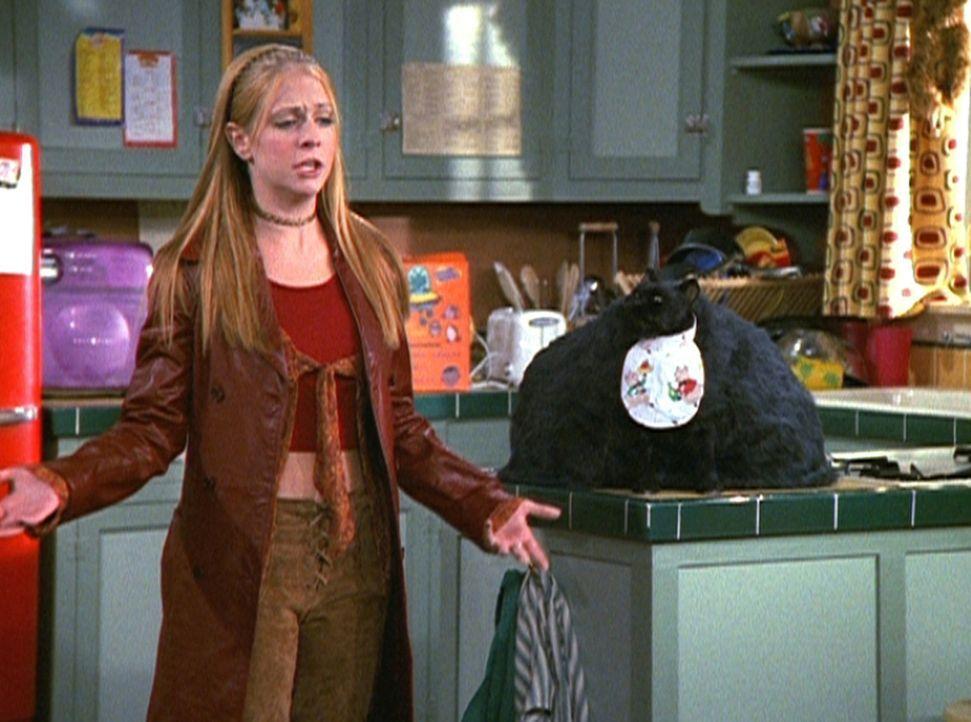 Sabrina (Melissa Joan Hart) hätte nicht gedacht, dass es so schwierig sein würde, ein von ihren Tanten unabhängiges Leben zu führen. - Bildquelle: Paramount Pictures
