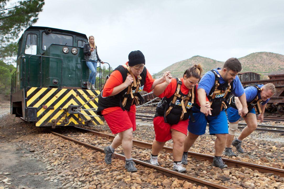 Haben (v.l.n.r.) Silvana, Marie, Semih und Stefan eine Chance gegen das andere Team? - Bildquelle: Enrique Cano SAT.1