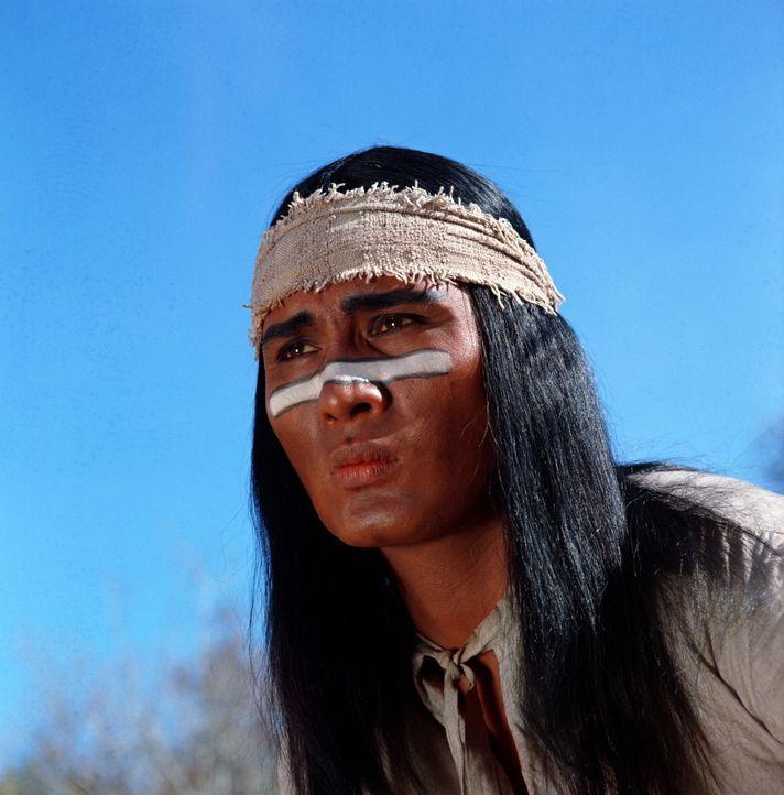 Der kaltblütige Krieger Salvaje (Nathaniel Narcisco) hat nur eines im Sinn: Er will sich an der abtrünnigen Sarah rächen und seinen Jungen zurüc...