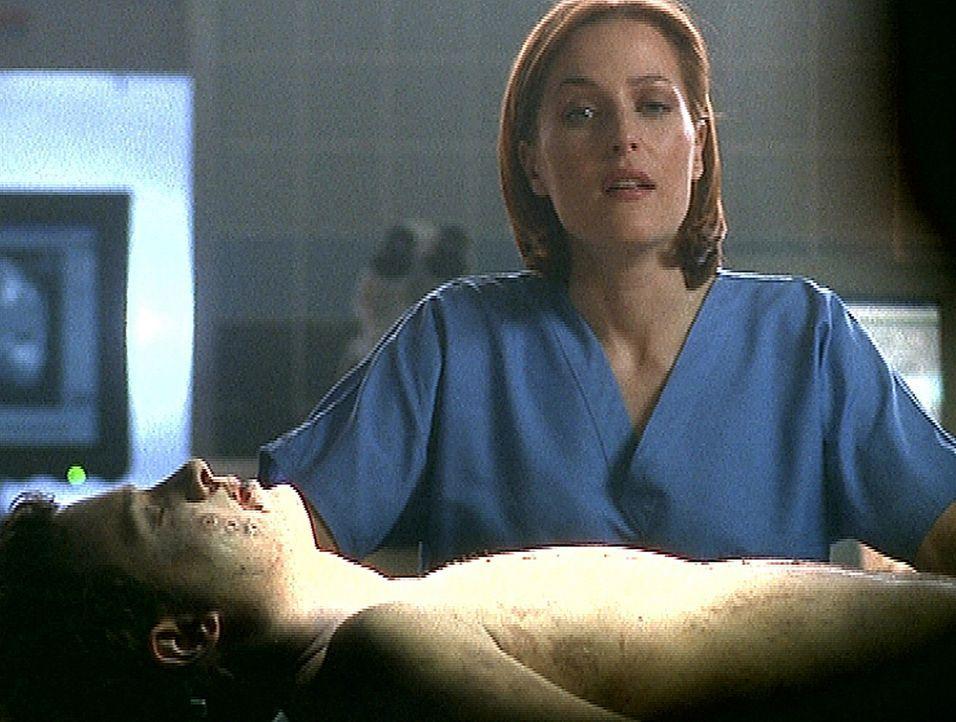 Scully (Gillian Anderson) muss eine Autopsie an der Leiche eines jungen Mannes durchführen, der zur gleichen Zeit wie Mulder von Außerirdischen entf... - Bildquelle: TM +   2000 Twentieth Century Fox Film Corporation. All Rights Reserved.