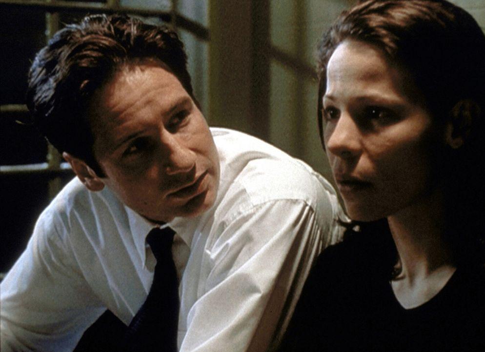 Mulder (David Duchovny, l.) entwickelt eine tiefe Sympathie für die blinde Marty Glenn (Lili Taylor, r.). - Bildquelle: TM +   2000 Twentieth Century Fox Film Corporation. All Rights Reserved.