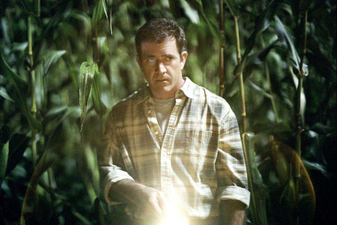 Farmer Graham Hess (Mel Gibson) entdeckt eines Tages einen 200 Meter großen Kornkreis in einem seiner Felder. Sind die rätselhaften Symbolen Botscha... - Bildquelle: Touchstone Pictures