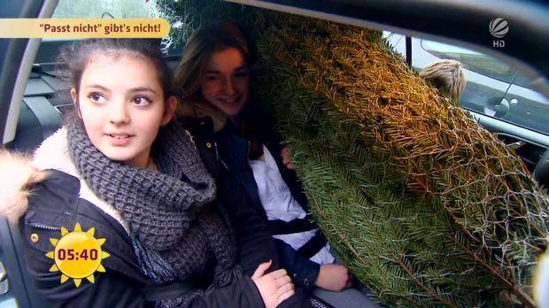 fr hst cksfernsehen video alle jahre wieder wie kommt der weihnachtsbaum ins auto sat 1. Black Bedroom Furniture Sets. Home Design Ideas