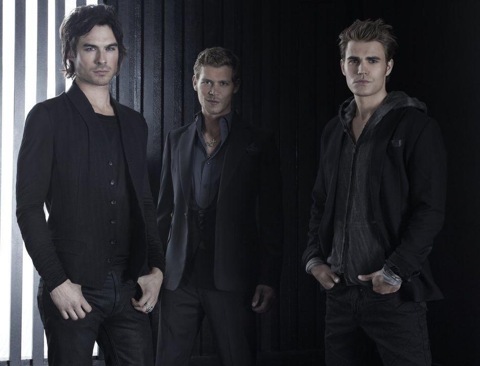 (3. Staffel) - Damon (Ian Somerhalder, l.) versucht alles, um seinen Bruder Stefan (Paul Wesley, r.) aus den Fängen von Klaus (Joseph Morgan, M.) zu... - Bildquelle: Warner Brothers