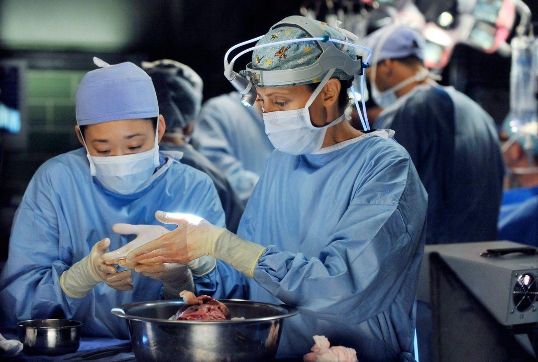 Noch ist alles in Ordnung, doch schon bald wird Christina (Sandra Oh, l.) bei einer Operation mit Teddy (Kim Raver, r.) an den Amoklauf erinnert ... - Bildquelle: ABC Studios