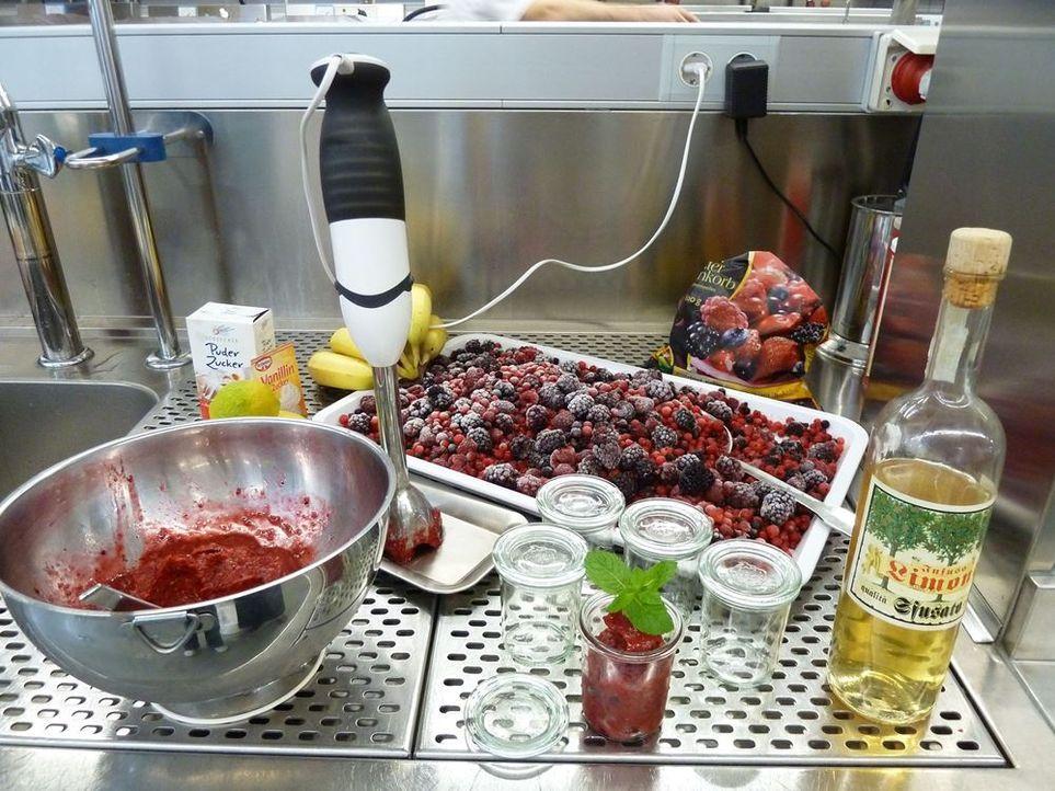 gelato lampo eis fontanella eismanufaktur mannheim (11)