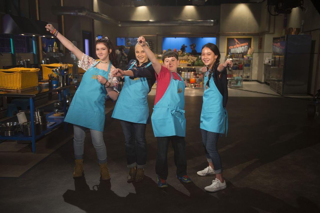 Die ehrgeizigen Junior-Köche treten bei Chopped gegeneinander an und tun alles, in der Küche mögliche, um den Titel zu holen: (v.l.n.r.) Bella Gross... - Bildquelle: Scott Gries 2015, Television Food Network, G.P. All Rights Reserved