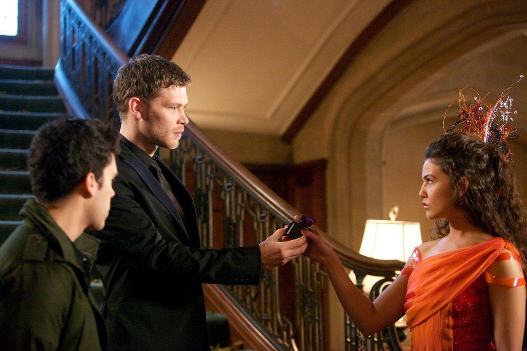 Als Klaus (Joseph Morgan, M.) der verunsicherten Davina (Danielle Campbell, r.) ein ganz besonderes Geschenk macht, ist nicht nur Josh (Steven Krueg... - Bildquelle: Warner Bros. Television