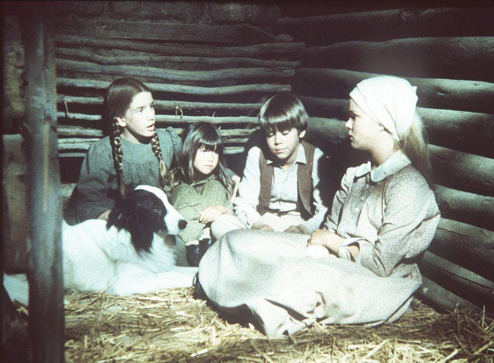 (v.l.n.r.) Laura (Melissa Gilbert), Carrie (Lindsay Sidney Greenbush), Andy (Patrick Laborteaux) und Mary (Melissa Sue Anderson) haben sich und ihre... - Bildquelle: Worldvision