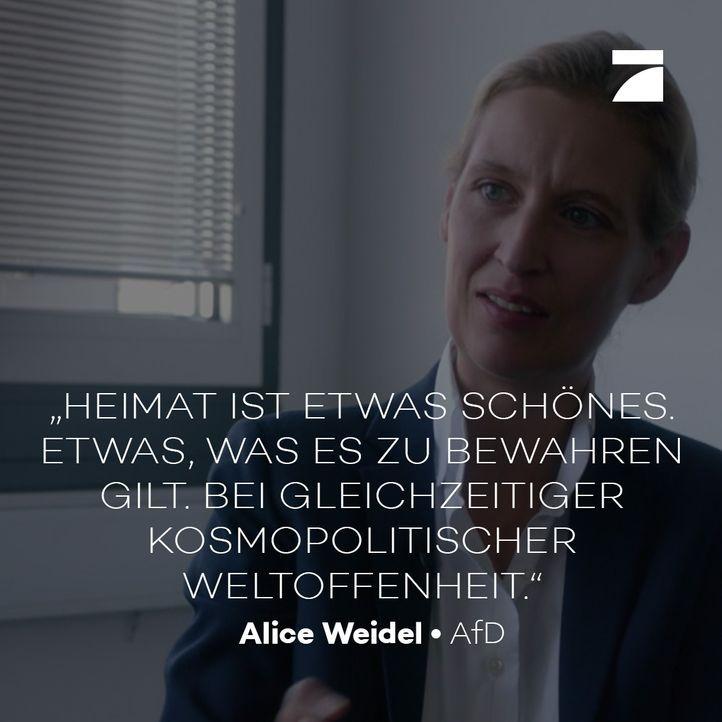 ALICE WEIDEL AFD