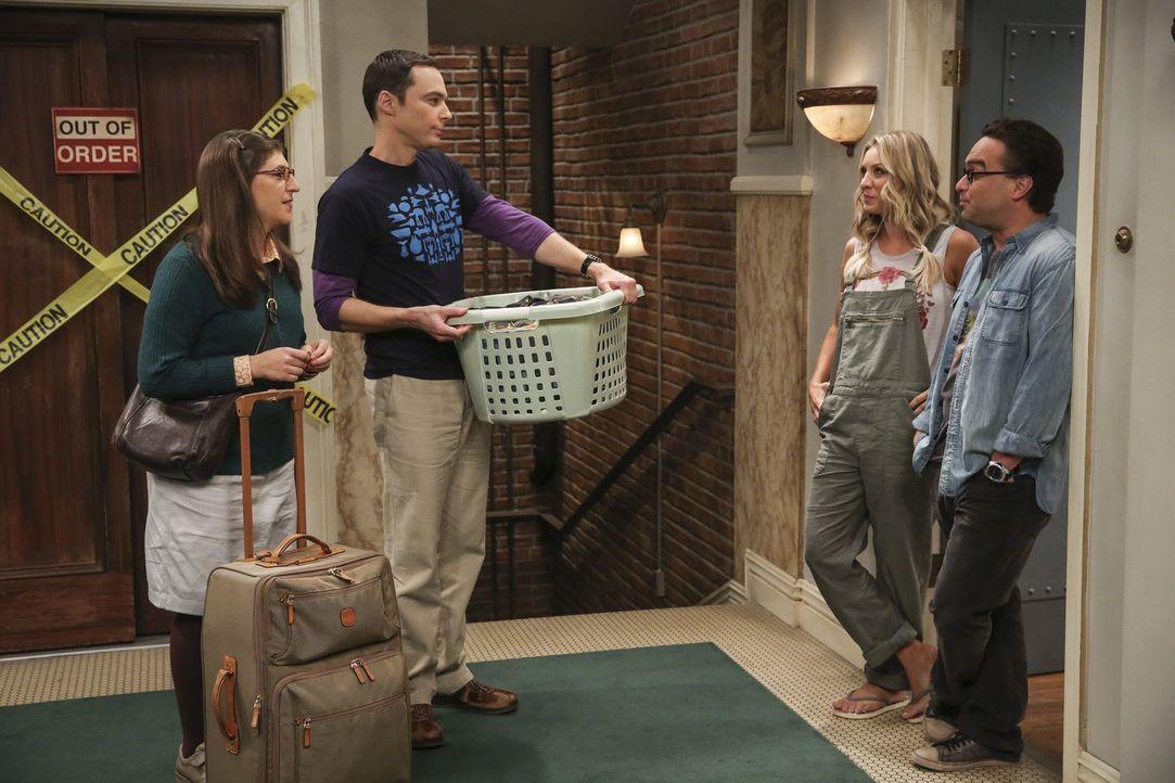 Jetzt sind die Paare Sheldon (Jim Parsons, 2.v.l.) und Amy (Mayim Bialik, l.) sowie Penny (Kaley Cuoco, 2.v.r.) und Leonard (Johnny Galecki, r.) auf... - Bildquelle: 2016 Warner Brothers