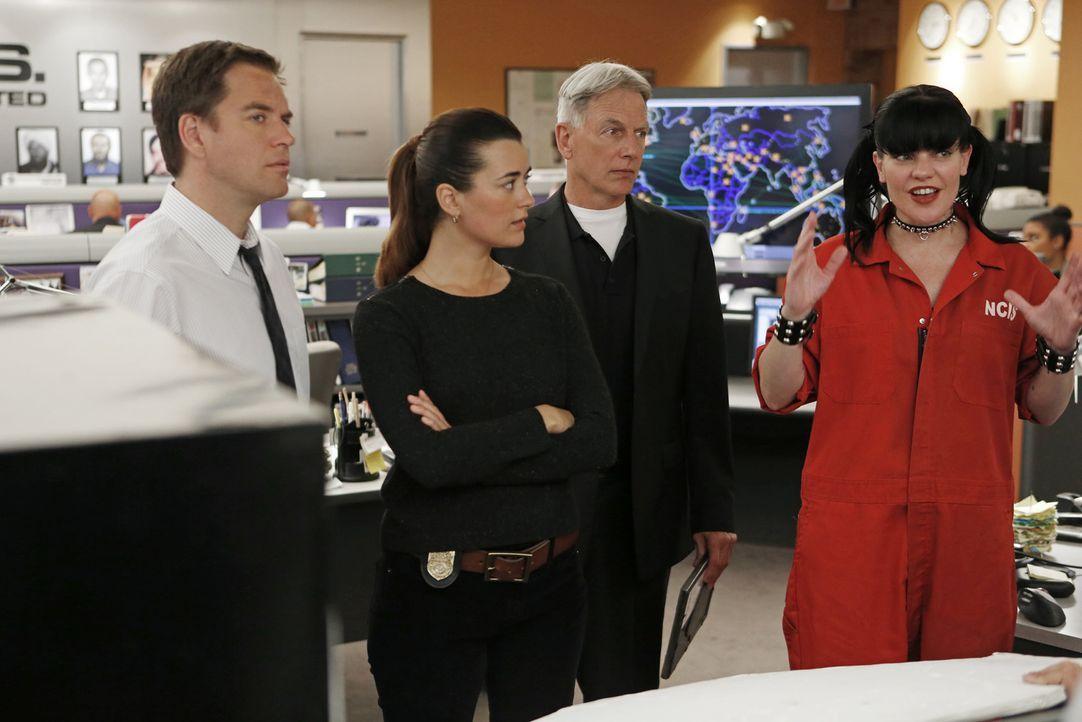 Müssen einen neuen Fall aufdecken: DiNozzo (Michael Weatherly, l.), Ziva (Cote de Pablo, 2.v.l.), Gibbs (Mark Harmon, 2.v.r.) und Abby (Pauley Perre... - Bildquelle: CBS Television