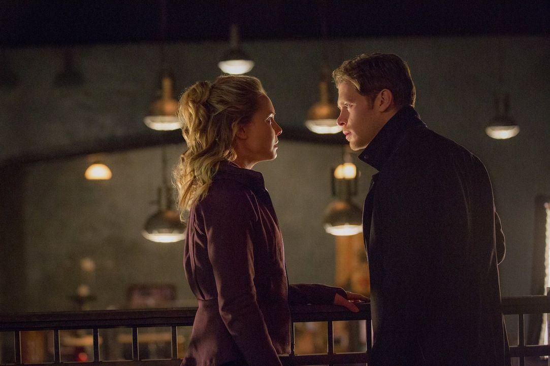 Klaus (Joseph Morgan, r.) und Cami (Leah Pipes, l.) lotsen den Stand ihrer Beziehung aus, während Hayley einen Rachefeldzug startet ... - Bildquelle: Warner Bros. Entertainment, Inc.