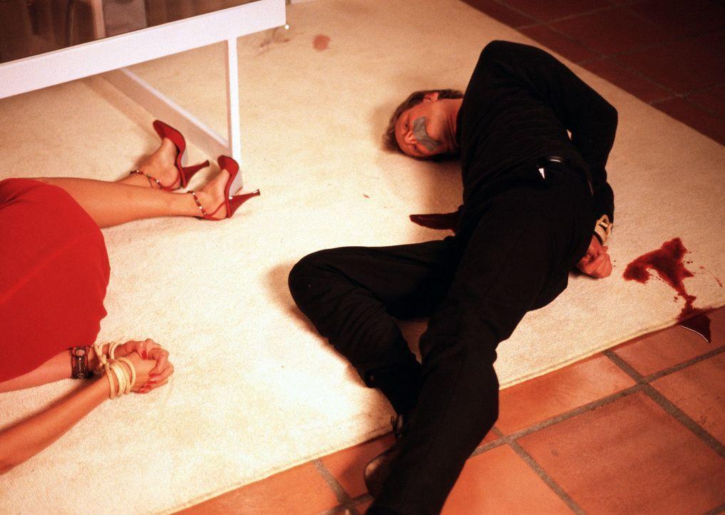 Als Lila Colletis Ex-Ehemann Paul (Nick Boraine) ermordet wird, fällt der Verdacht sogleich auf die Gefängnis-Psychologin. Diese kann kein Alibi v... - Bildquelle: ApolloMedia