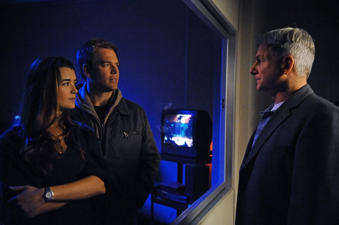 Ermitteln in einem neuen Mordfall: Ziva (Cote de Pablo, l.), DiNozzo (Michael Weatherly, M.) und Gibbs (Mark Harmon, r.) ... - Bildquelle: 2012 CBS Broadcasting Inc. All Rights Reserved.