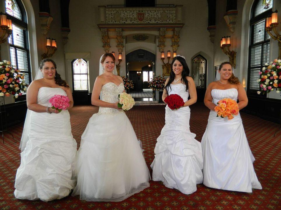 Jede der vier Bräute glaubt, die perfekte Hochzeit organisiert zu haben, doch wer wird auch die Konkurrenz davon überzeugen können: Chrissy (l.), Em... - Bildquelle: Richard Vagg DCL