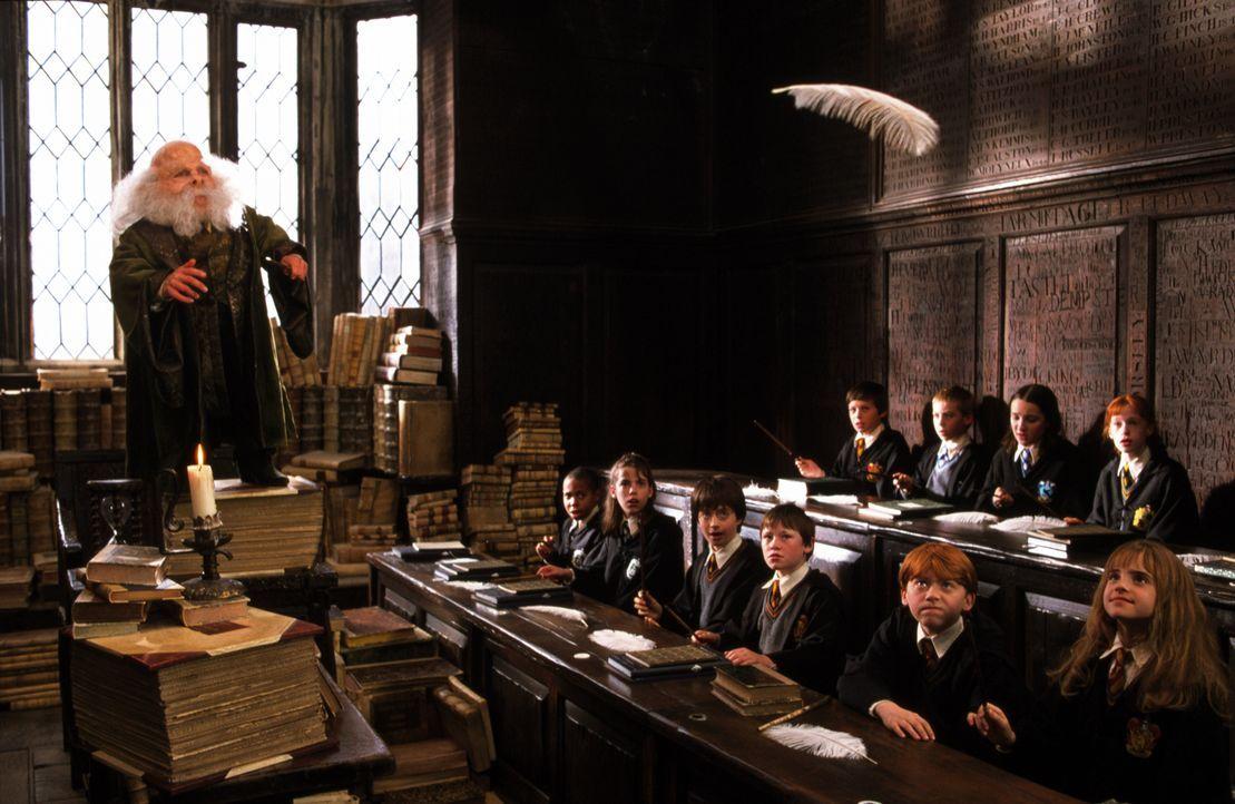 Die neuen Schüler der berühmten Zauberschule Hogwarts erhalten bei Professor Flitwick (Warwick Davis, l.) ihre erste Zauberstunde ... - Bildquelle: Warner Bros. Pictures