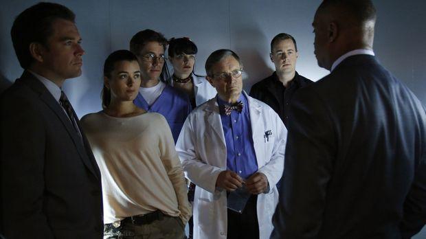 Ein neuer Fall wartet auf Tony (Michael Weatherly, l.), Ziva (Cote de Pablo,...