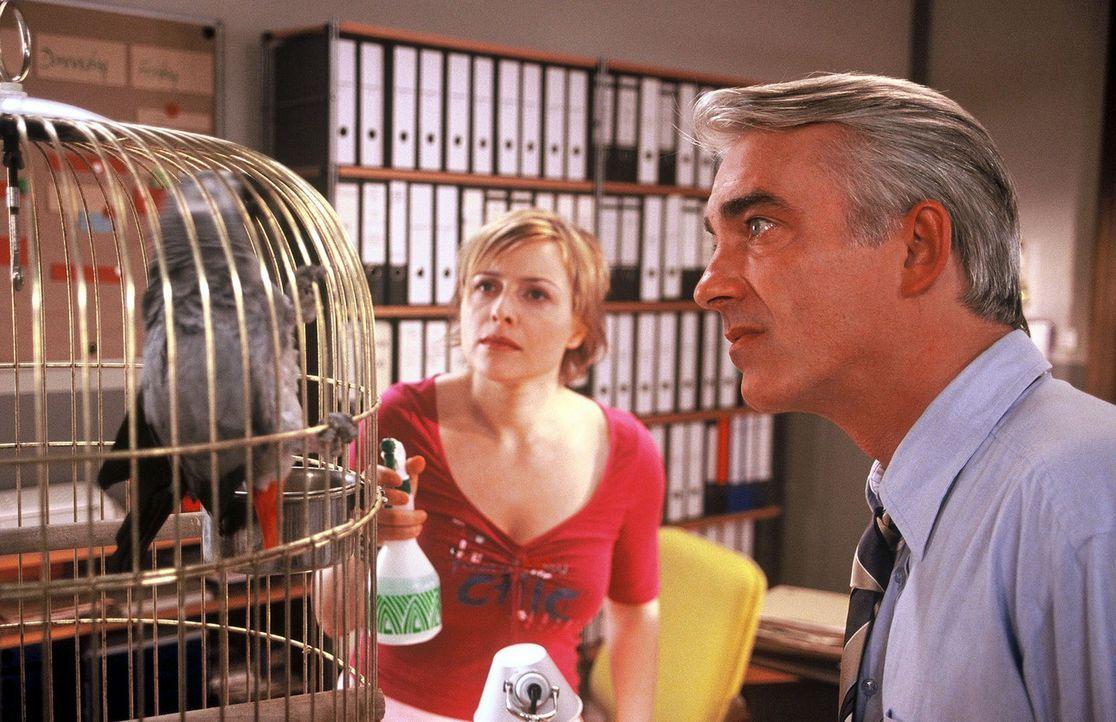 Felix (Christoph M. Ohrt, r.) und Biene (Isabel Tuengerthal, l.) sind geteilter Meinung über Haustiere im Büro. - Bildquelle: Hardy Spitz Sat.1