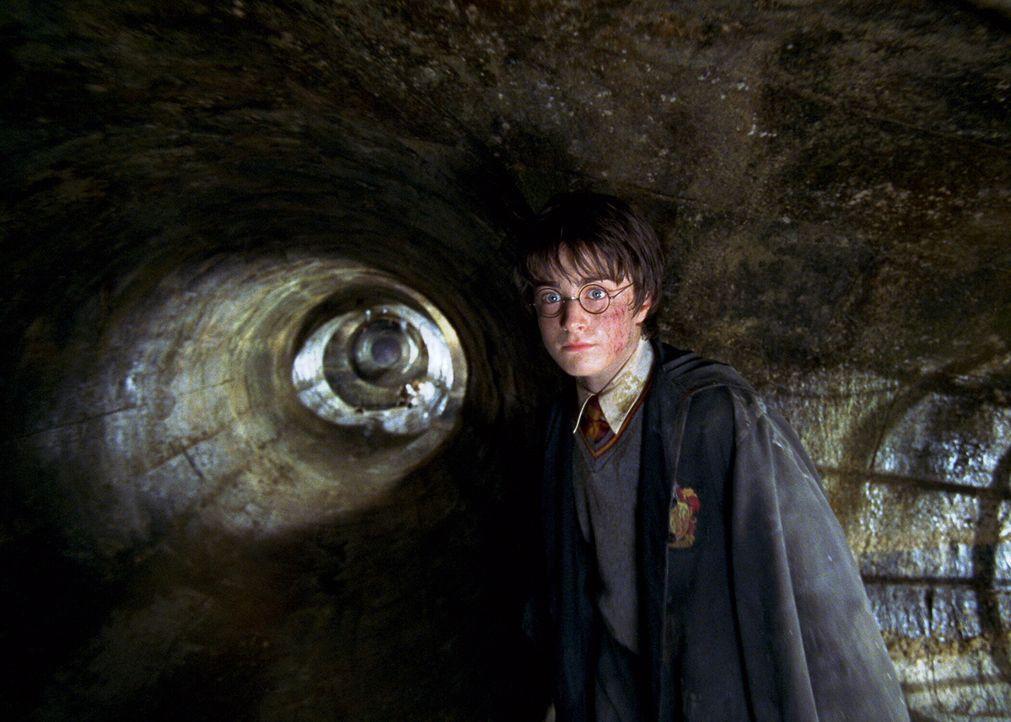 """Als """"Hogwarts Schule für Hexerei und Zauberei"""" bedroht wird, machen sich Harry Potter (Daniel Radcliffe) und seine Freunde daran, einem bitterbösen... - Bildquelle: Warner Bros. Pictures"""