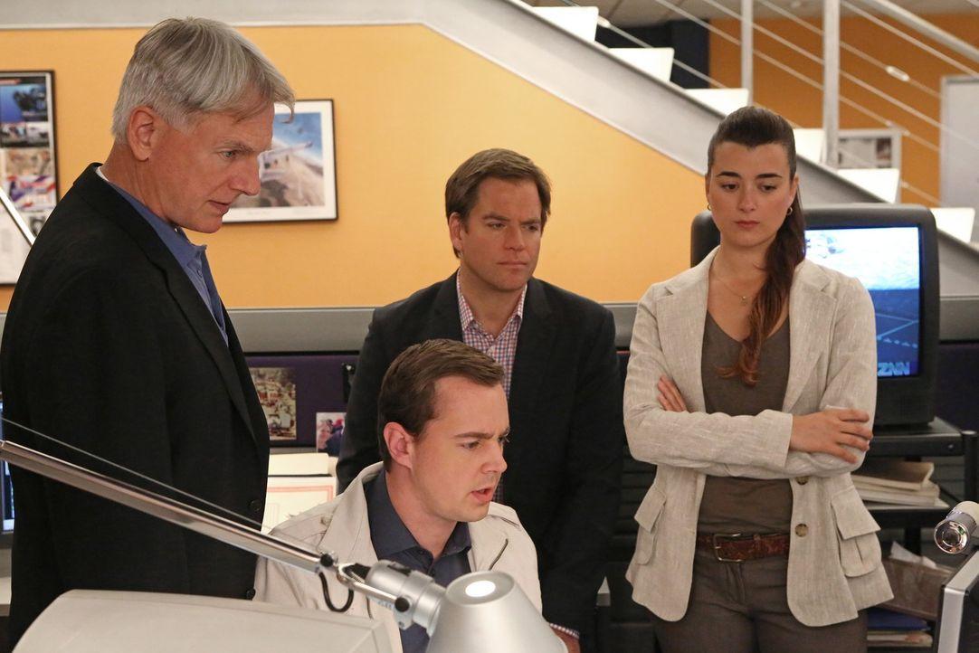Ein neuer Fall beschäftigt Gibbs (Mark Harmon, l.), McGee (Sean Murray, 2.v.l.), Tony (Michael Weatherly, 2.v.r.) und Ziva (Cote de Pablo, r.) ... - Bildquelle: CBS Television