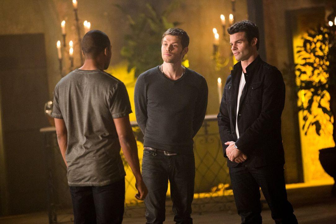 Noch fühlen die Jungs sich überlegen - Bildquelle: Warner Bros. Entertainment Inc.
