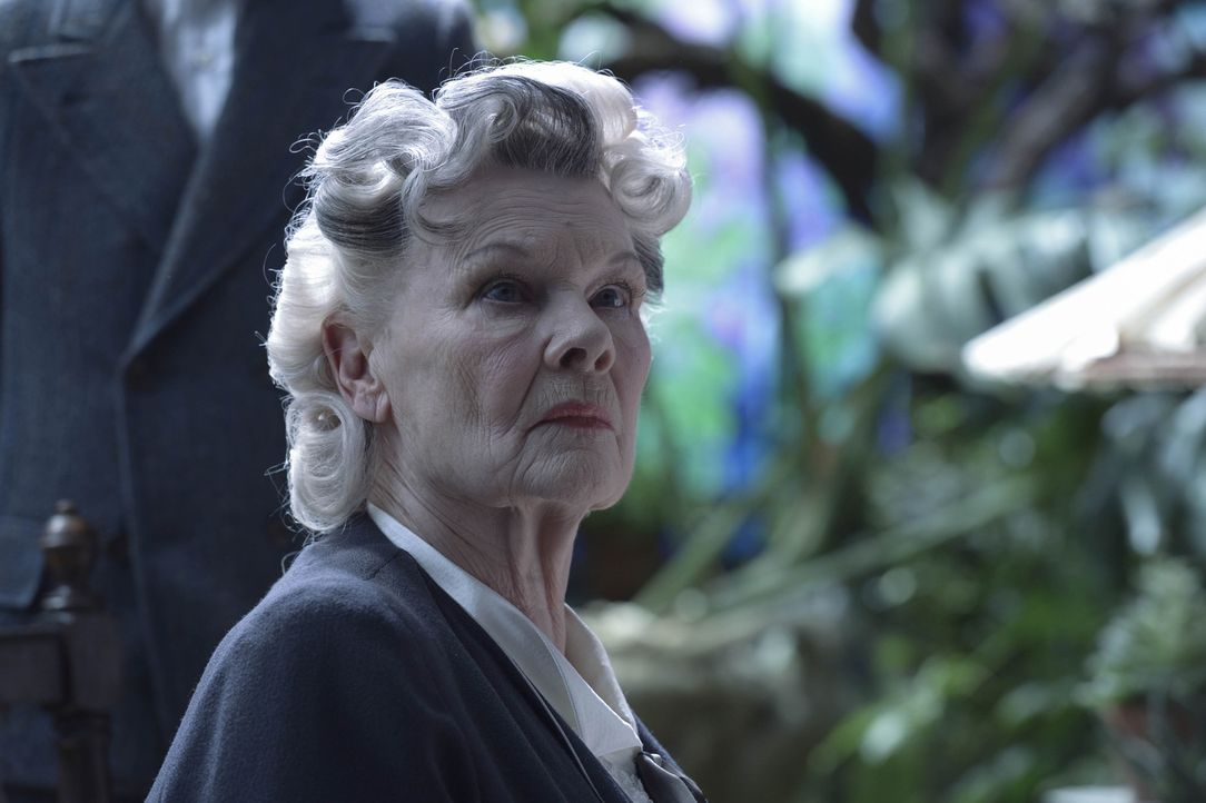 Miss Avocet (Judi Dench) - Bildquelle: Jay Maidment 2016 Twentieth Century Fox Film Corporation.  All rights reserved./Jay Maidment