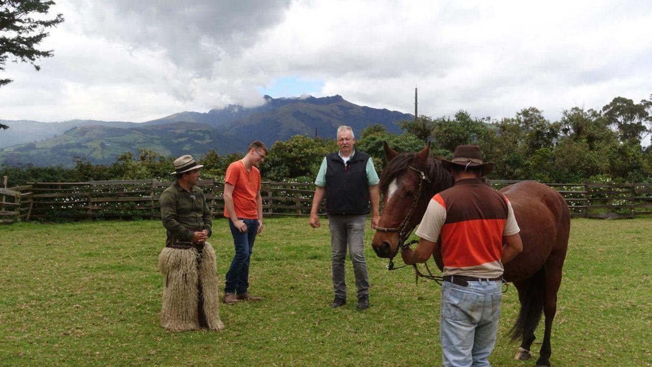 Ein neuer kniffliger Auftrag wartet in Ecuador auf Pferdeflüsterer und Tierchiropraktiker Tamme Hanken (2.v.r.) und seinen Lehrling Anton (2.v.l.).... - Bildquelle: kabel eins