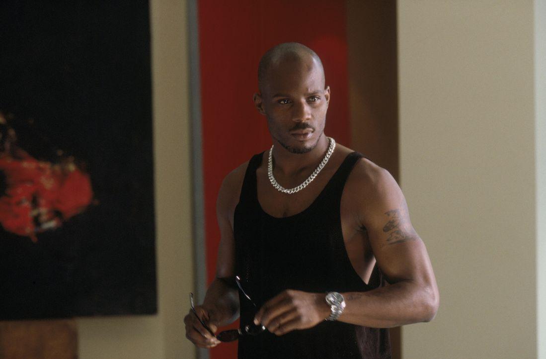 Will in der Drogenunterwelt nach ganz oben: Latrell Walker (DMX) ... - Bildquelle: Warner Bros. Pictures