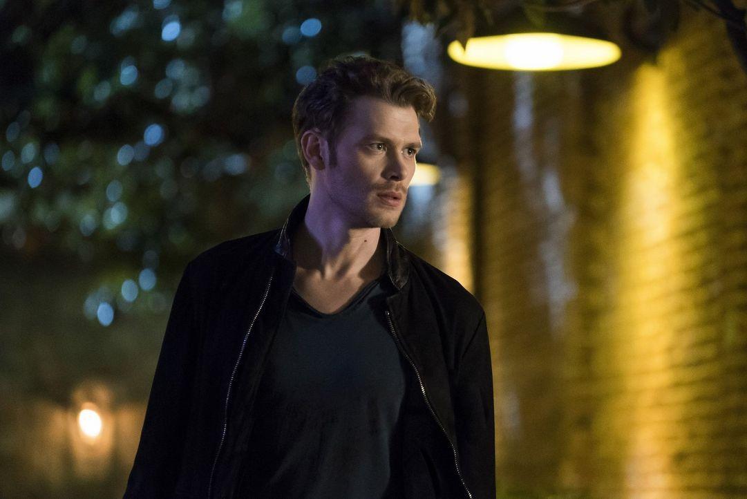 Während Elijah ein Bündnis auf die Probe stellt und Freya sich in große Gefahr begibt, erkennt Klaus (Joseph Morgan), dass er auf Frieden mit einem... - Bildquelle: 2016 Warner Brothers