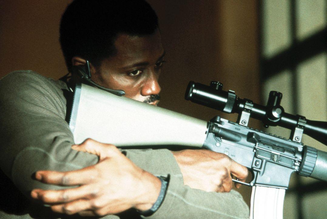 Joe (Wesley Snipes) hat nichts mehr zu verlieren. Seine heißgeliebte kleine Tochter wurde von einem Amokläufer erschossen. Sein ganzer Hass gilt n... - Bildquelle: Kinowelt