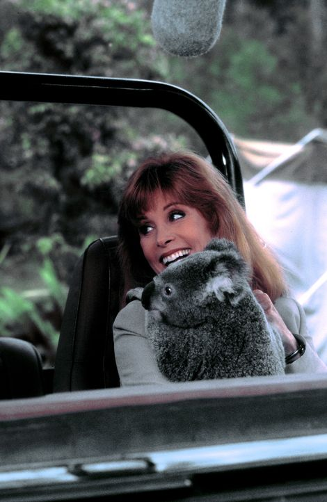 Liebevoll kümmert sich Jennifer (Stefanie Powers) um einen jungen Koalabären, dem sie in ihrem Reservat ein neues Zuhause bieten will ... - Bildquelle: Columbia Pictures