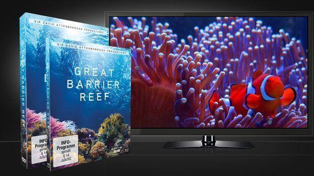 Great Barrier Reef DVD und Blu-ray