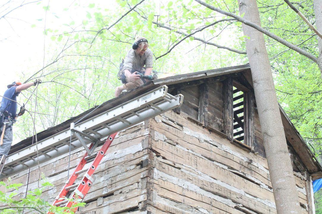 Eine echte Baum-Apotheke? Für die Treehouse Guys eigentlich kein Problem, oder? - Bildquelle: 2016,DIY Network/Scripps Networks, LLC. All Rights Reserved